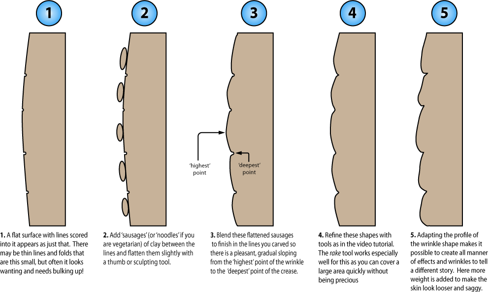 Illustration showing a cross section of wrinkle sculpting method