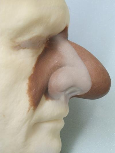 Nose montage for comparison
