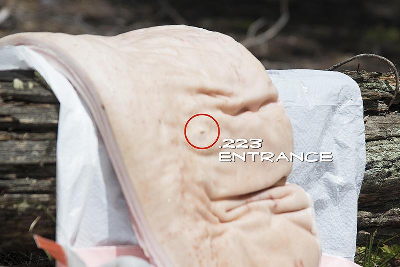 223 Entrance